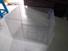 Pet supplies for sale Tambaram   Locanto™ Pet Market in Tambaram